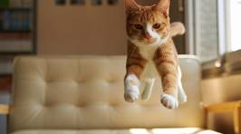 Cats Jumping Through Their Nine Lives in Style