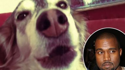 Man Auto-Tunes His Dog And It Sounds Just Like Kanye West