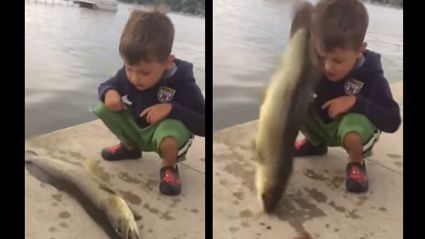 Kid Gets Owned By Fish