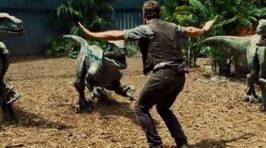 Zoo Keepers Are Hilariously Reenacting 'Jurassic World' With Real Animals