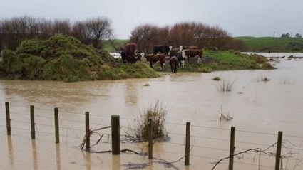 Flooding Wreaks Havoc Throughout Lower North Island