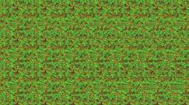Remember Magic Eye? Can You Still Do Them?