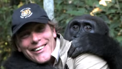 The Touching Moment A Man And Gorilla Reunite