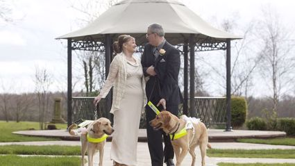 Guide Dog Owners Get Married After Their Pets Fall In Love With Each Other
