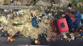 10,000 Chicks Scattered Across Road After Lorry Crash