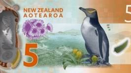 New Zealand's New, Brighter Bank Notes