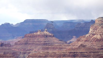 If All the Humans Piled Up In the Grand Canyon, It Would Look Like This