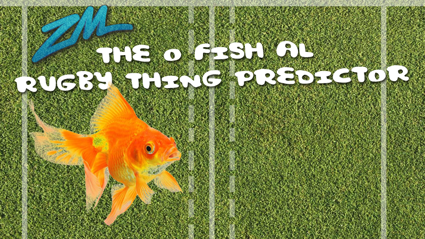 Video: The O-Fish-Al Rugby Thingy Predictor! NZ vs Australia