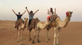 Photos: FVM's Family Trip To Dubai #1