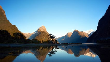 How Kiwis Perceive NZ Vs The Actual Stats