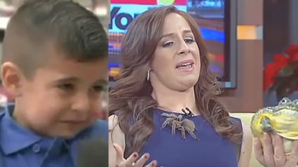 The Best News Bloopers Of 2015 Are Here and They're Hilarious