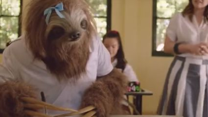 """Everyone Is Talking About The """"Stoner Sloth"""""""