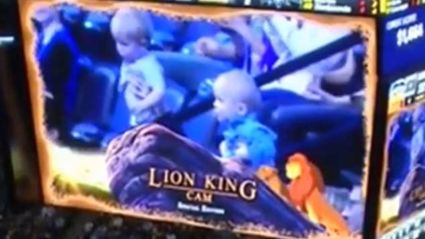 The Lion King Cam is So Much Better Than Kisscam