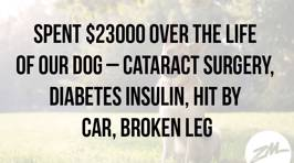 How Much Did It Cost You To Save Your Pet?