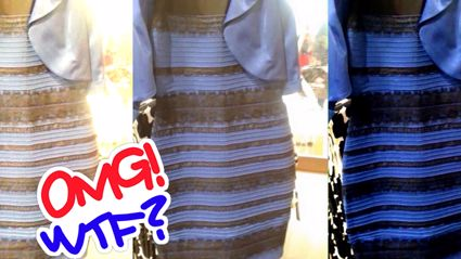 Is This the New #TheDress? The Internet Can't Figure Out What Colour This Bag Is