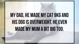 Who's to Blame For Your Pet's Obesity?