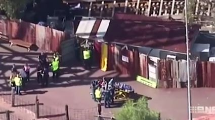 Dreamworld Tragedy: What Happened