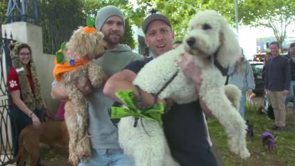 VIDEO: Howloween With Fletch, Vaughan & Megan