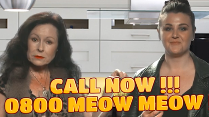 Cat News Meets Real Housewives of Auckland