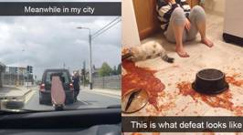 10 Snapchat users who are having a worse day than you