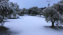 FVM's listeners share epic photos of the snow