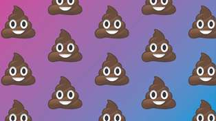 So apparently we've been pooing wrong our entire life
