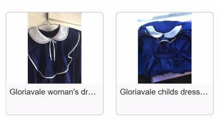 Get your Halloween costume sorted now with these genuine Gloriavale dresses