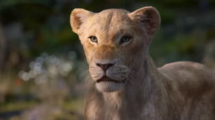 A new look at The Lion King in amazing new trailer