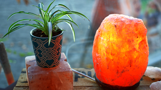 If you own a salt lamp, this PSA is for you!