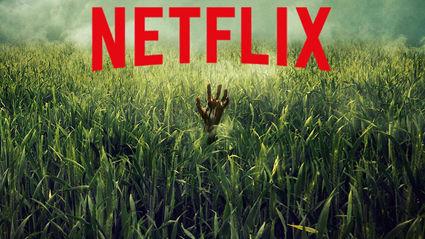 Netflix's In The Tall Grass trailer has us terrified of grass