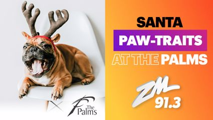 CHRISTCHURCH: Paw-traits at The Palms!