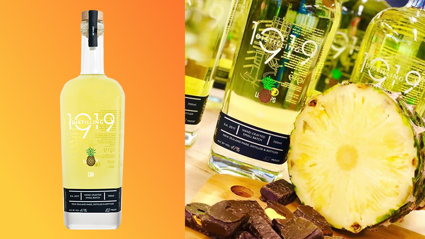 Pineapple Lump Gin is our newest obsession!