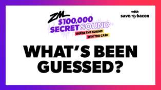 ZM Secret Sound: What's been guessed!