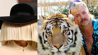 Sia has written a Tiger King parody song about Joe Exotic