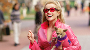 Legally Blonde 3 is officially happening - and we finally know when!