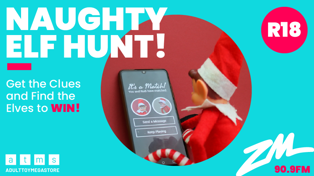 Wellington: The Naughty Elf Hunt!
