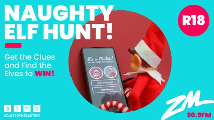 Wellington: The Naughty Elf Hunt!